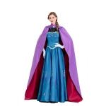 Adult  Halloween Costumes Elsa Snow Queen Princess Anna Dress