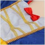 Disney Princess Costumes Snow White Style