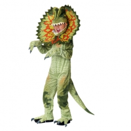 Animal Costumes for Kids Triceratops Cosplay