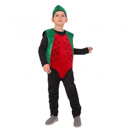 Food Costumes for Kid Watermelon Cosplay